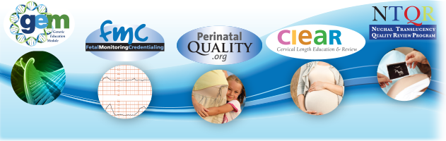 Perinatal Quality Foundation Programs